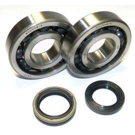 Crank Bearing and Seal Kit Suzuki 250 RM 05-08