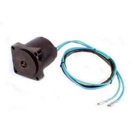 Johnson / Evinrude 130 / 200-250 Hp Tilt / Trim Motor