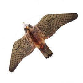 Stopgull falcon mågeskræmmer med line