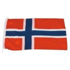 Gæsteflag norge 30x45 cm